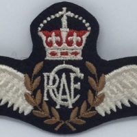 PATCH – Pilot Wings